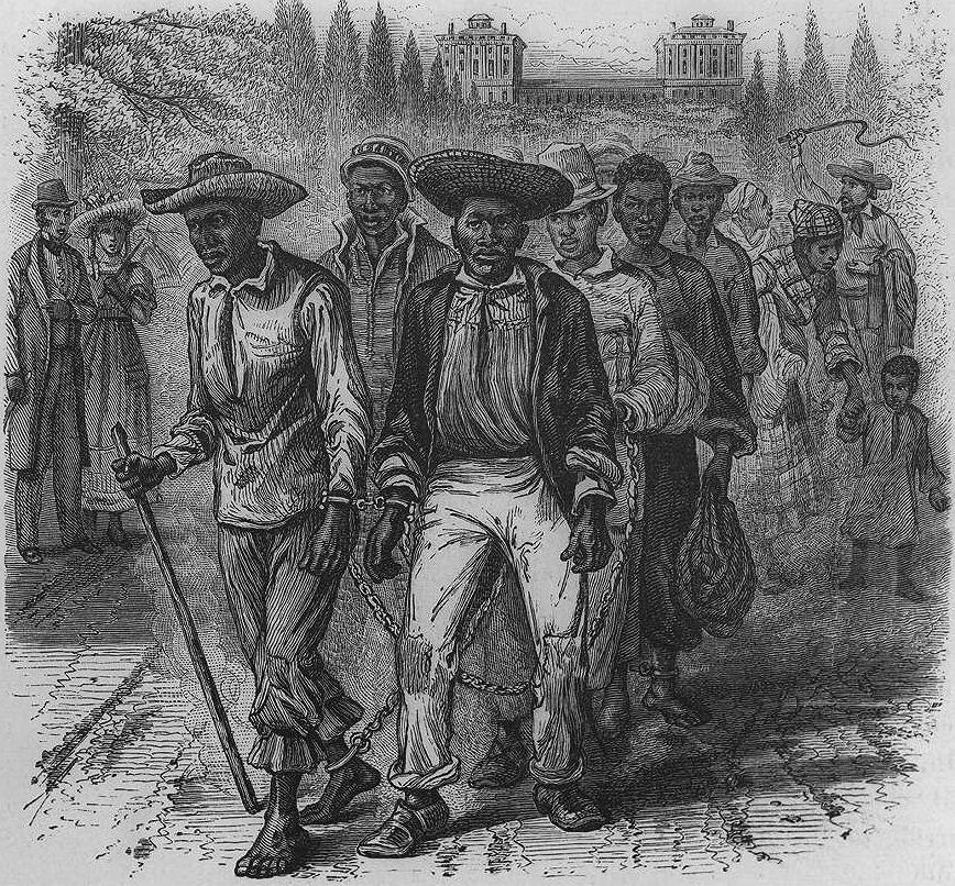 how significant was slave trade in Get information, facts, and pictures about slave trade at encyclopediacom make research projects and school reports about slave trade easy with credible articles.