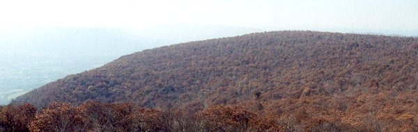 looking towards the Narrows in Giles County