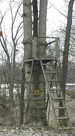 deer stand at Occoquan Bay National Wildlife Refuge